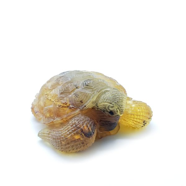 Natural Amber Carved Turtle