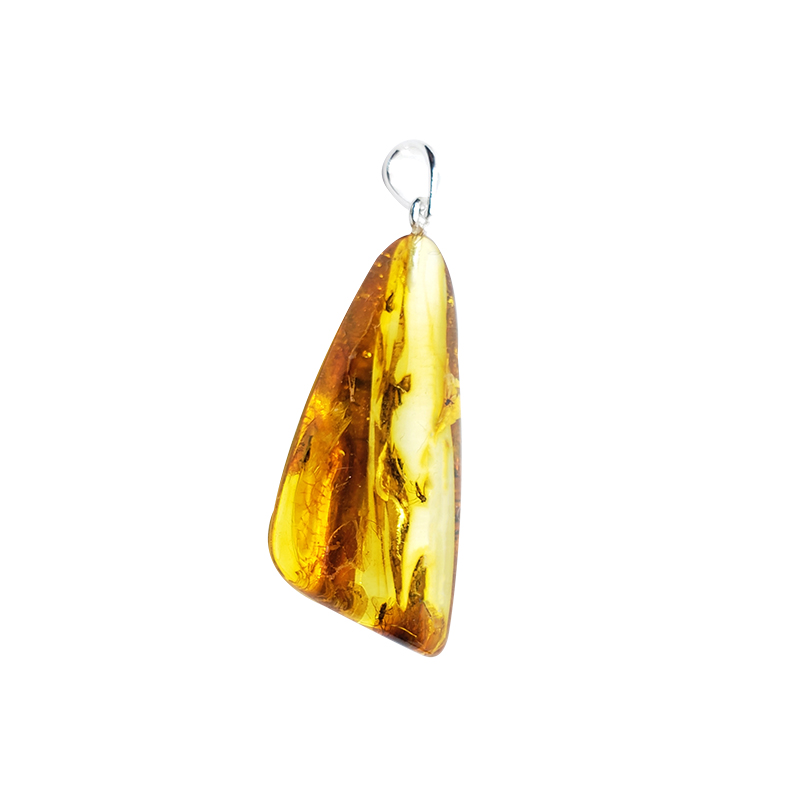 Natural Baltic Amber With Insects Pendant