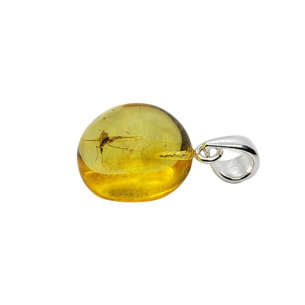 Natural Amber Drop Pendant With Insects